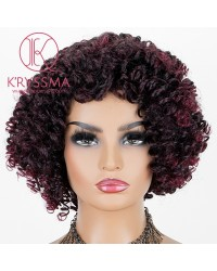 Dark Purple Mixed Dark Red Lace Front Wig Short Curly Synthetic Wigs Wine Red Glueless Wig